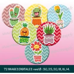 Images : captus, fleurs en folies - Planches : Rondes & Ovales, Rondes et Ovales