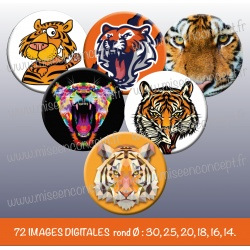 Images : Animal : Tigre - Planches : Rondes & Ovales, Rondes et Ovales
