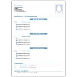 Curriculum vitae maquette avec vos informations modèle 8