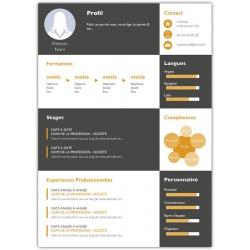 Curriculum vitae maquette avec vos informations modèle 10
